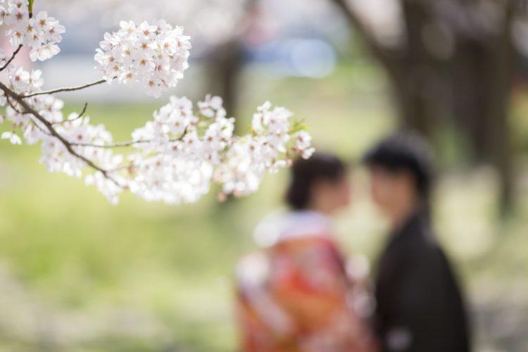 \Spring/